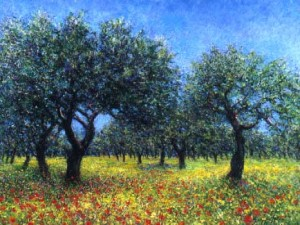 Silver Lead Olive Grove