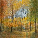The Fall Trail16x1224x1832x2448x36