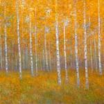 Golden Aspens (Golden Birches) 12x1816x2424x3640x60