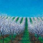 Blossom Hill15x2420x3230x48